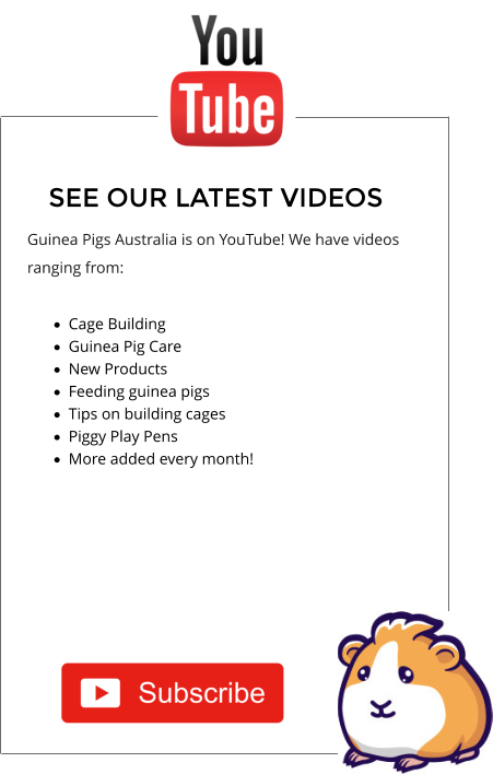 SEE OUR LATEST VIDEOS Guinea Pigs Australia is on YouTube! We have videos ranging from:   ·	Cage Building  ·	Guinea Pig Care ·	New Products  ·	Feeding guinea pigs  ·	Tips on building cages ·	Piggy Play Pens ·	More added every month!